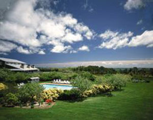 island inn- petfriendly hotel in marthas vineyard