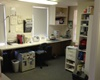 martha's vineyard veterinarian sea breeze vet in martha's vineyard massachusetts